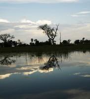 Botswana54