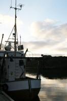 El pescador Noruega6