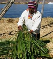 Titicaca23