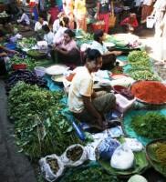 Birmania16